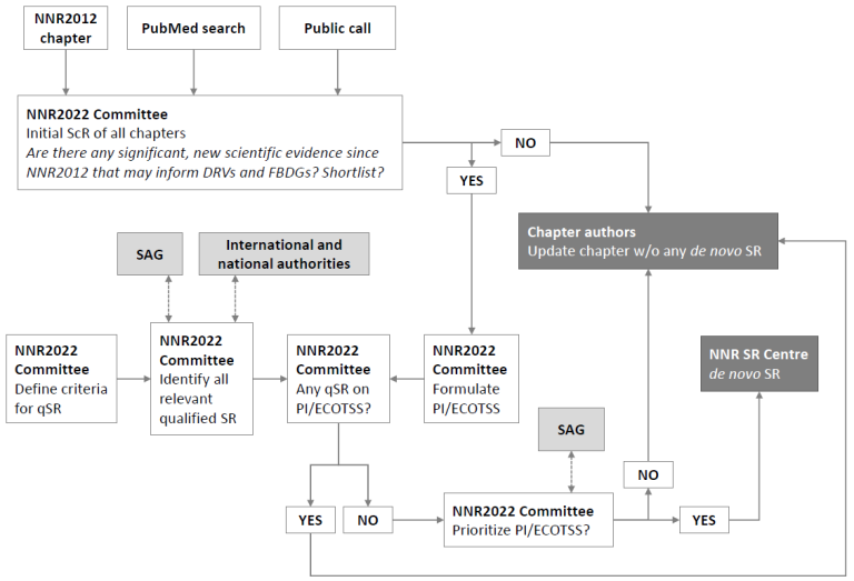 NNR 2022 process for updating chapters