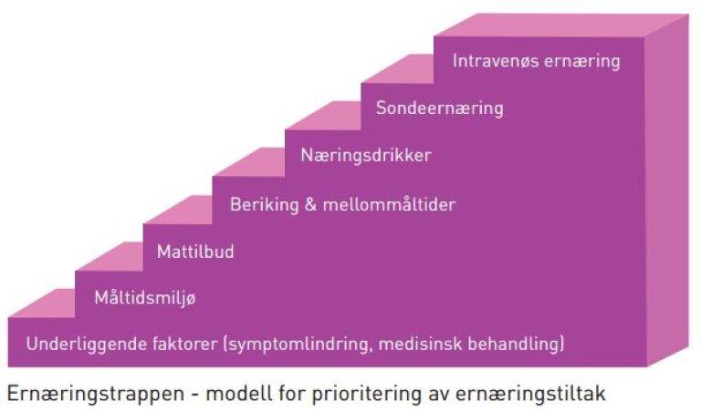 Illustrasjon av ernæringstrappen, en modell for prioritering av ernæringstiltak