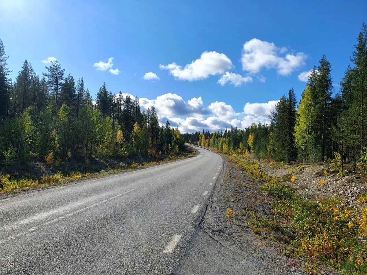 VEIEN VIDERE: Norge gjenåpnes lørdag 25. september klokken 16.00. Foto: Unsplash