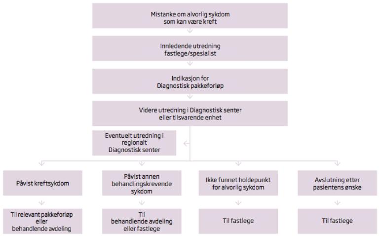Diagnostisk pakkeforløp flytskjema