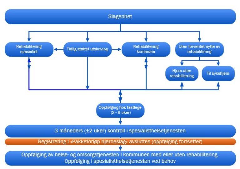 Skjematisk fremstilling av oppfølging og rehabiliteringsfasen i pakkeforløp hjerneslag