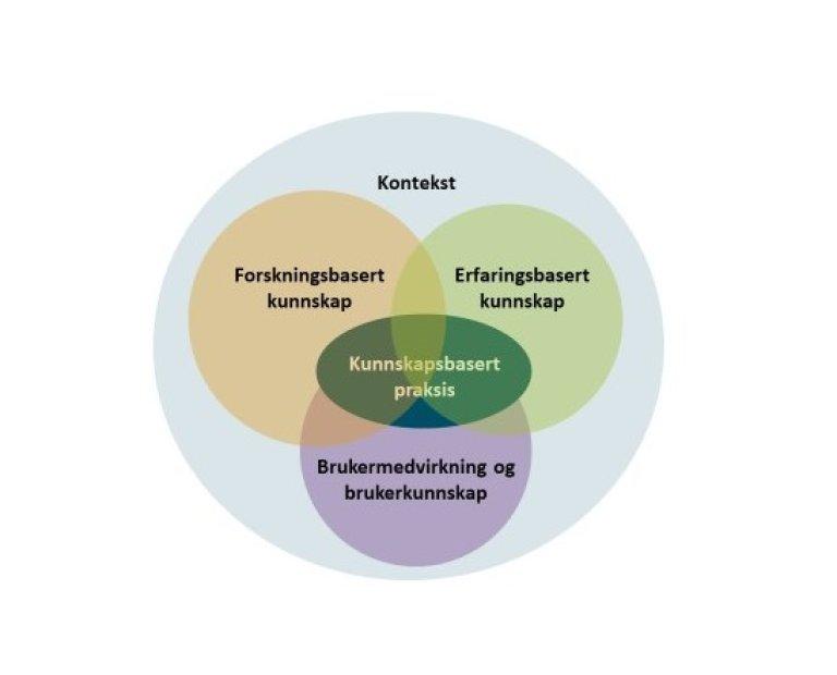 Kjønnsinkongruens - illustrasjon som viser hovedelementene i kunnskapsbasert praksis.jpg