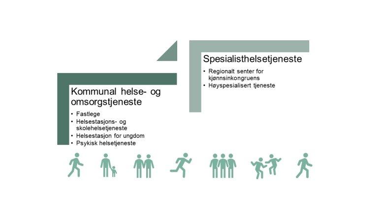 Kjønnsinkongruens - Overordnet organisering av helsetjenestetilbudet.JPG