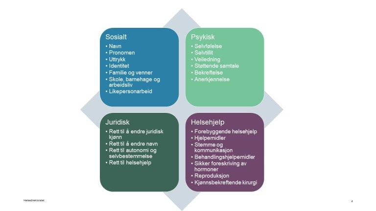 Kjønnsinkongruens - Områder som inngår i helhetlig tilbud til personer med kjønnsinkongruens.JPG