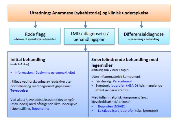 trinn1-utredning-anamnese-og-klinisk-undersøkelse.png