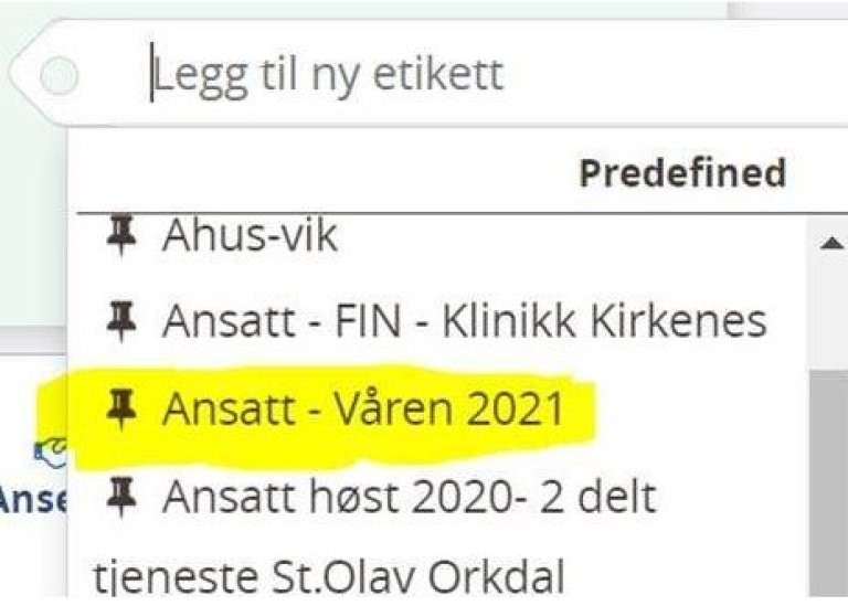 Ansatt - Våren 2021.jpg