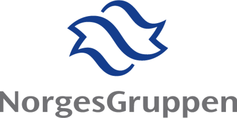 NorgesGruppen logo.png